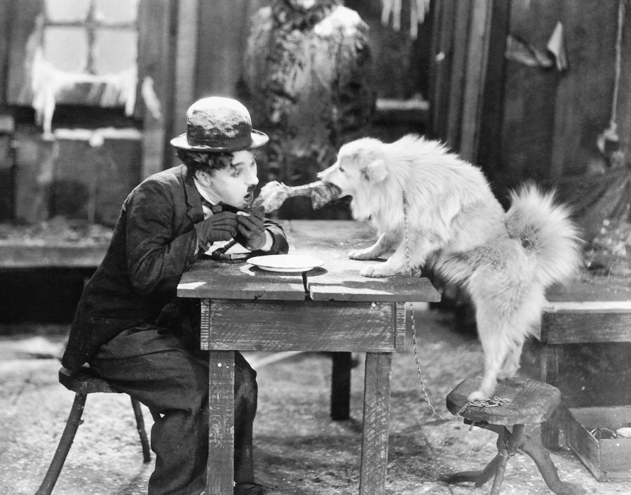 Se Guldfeber (1925) på Filmstriben